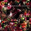 仮面ライダーアマゾンズ オリジナルサウンドトラック (2枚組 ディスク2)