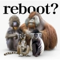 【CDシングル】reboot〜あきらめない詩〜/流れ星