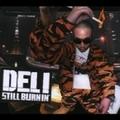 STILL BURNIN' (2枚組 ディスク2)