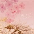 桜、サクラ、Sakura〜ビューティフル・ソングス