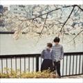 サニーデイ・サービス BEST 1995-2000 (2枚組 ディスク1)