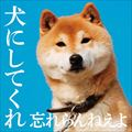 犬にしてくれ(スペシャルプライス盤)