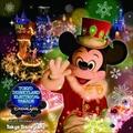東京ディズニーランド・エレクトリカルパレード・ドリームライツ 〜2015 クリスマスバージョン