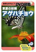 自然なぜなに? DVD図鑑 草原の妖精 アゲハチョウ