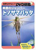 自然なぜなに? DVD図鑑 草原のジャンパー トノサマバッタ