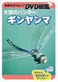 自然なぜなに? DVD図鑑 大空のハンター ギンヤンマ