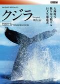 BBC ワイルドライフ・スペシャルII クジラ