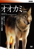 BBC ワイルドライフ・スペシャルII オオカミ