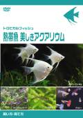 トロピカルフィッシュ 熱帯魚 美しきアクアリウム 飼い方・育て方