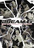 DREAM.6 ミドル級グランプリ2008 決勝戦