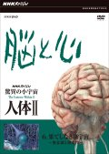 NHKスペシャル 驚異の小宇宙 人体II 脳と心 第6集 果てしなき脳宇宙〜無意識と創造性〜