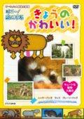ダーウィンの動物大図鑑 はろ〜!あにまる きょうのかわいい! キュートな動物大集合 レッサーパンダ・ラッコ・プレーリードック