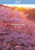 【Blu-ray】virtual trip さくら nostalgia