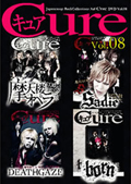 Japanesque Rock Collectionz Aid DVD「Cure」 Vol.8