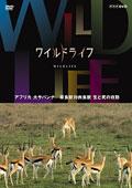 ワイルドライフ アフリカ大サバンナ 草食獣対肉食獣 生と死の攻防