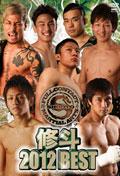 修斗 2012 BEST