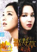 福寿草 Vol.22