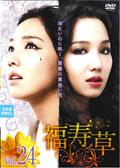 福寿草 Vol.24
