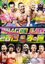 DRAGON GATE 2013�Ƚդοء�