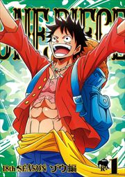 ONE PIECE ワンピース 18thシーズン ゾウ編 R-1