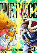 ONE PIECE ワンピース 18thシーズン ゾウ編 R-3